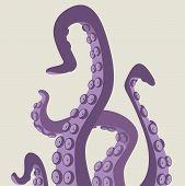 picture of kraken  - Scary group of wild marine animal tentacles - JPG