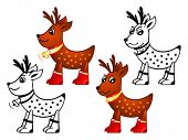 stock photo of cariboo  - Christmas Reindeers isolated - JPG