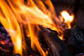 Extreme Closeup Of Open Fire Flames. Barbecue Fire Preparing In The Outdoors. Burning Wood In Extrem poster