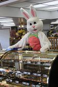 image of buck teeth  - easter bunny eating and sailing chocolates in a store - JPG