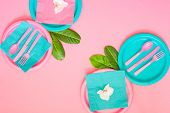 A Picnic Set With Contrast Pink And Cyan Colours Paper Plates, Napkins, Pink Plastic Cutlery And Coc poster
