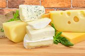 Pieces Of Different Soft And Semi-soft Cheese With Mold, Medium-hard Cheese, Swiss-type Cheese And H poster