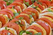 Healthy Tomatoes And Mozzarella Chopped In Salad Starter Row. Wonderful Vegetarian Vegan Appetizer.  poster