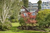 Colorful Lawn And Garden In A Seattle Neighborhood. poster