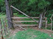 The Entrance Wooden Gate On A Forest Road. Entrance Gate To Pine Forest. Entrance Gate To A Rustic. poster