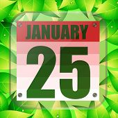 January 25 Icon. For Planning Important Day With Green Leaves. Banner For Holidays And Special Days. poster