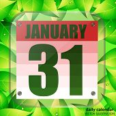 January 31 Icon. For Planning Important Day. Banner For Holidays And Special Days With Green Leaves. poster