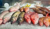 image of ice cube  - Assortment of fresh fish on ice in a market - JPG