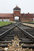 Traintracks leading to Birkenau