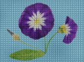 Illustration. Cross-stitch Bouquet Of Flowers. Wildflowers. Bindweed, Convolvulus, Morning-glory. Fl poster