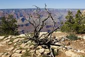 Grand Canyon National Park, USA