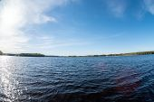 A Motor Boat Ride On A Large Picturesque Forest Lake. Sunny Summer, Belarus, Lake Plissa View From T poster