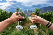 Hands Holding Wines Glasses And Cheering, Outdoor Wine Drinking And Tasting, Canadian Winery Tour Vi poster