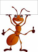 foto of fire ant  - Vector Illustration of a cute cartoon ant holding a blank advertising board - JPG