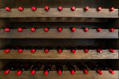 Lines Of Wine Bottles With A Red Seal, Stored On A Wooden Rack, Tasting Room Wines Display, Tasting  poster