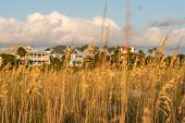 Ocean View Houses At Wild Dunes Resort poster