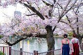 Women Back Wear Traditional Japanese Kimono Or Yukata, Woman Behind While Sightseeing Sakura In Saku poster