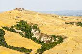 pic of senesi  - Crete senesi characteristic landscape in Val d - JPG