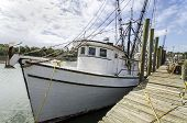 stock photo of lobster boat  - Shrimp boats at the docks in McClellanville South Carolina - JPG