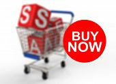 3D Shopping Cart Sale Buy Now