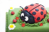stock photo of goodies  - pic of lady bug birthday cake on green - JPG