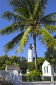 Lighthouse And Palms