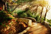 stock photo of fantasy  - Mystical Park - JPG