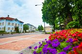 Flowers And Streets Of Liechtenstein