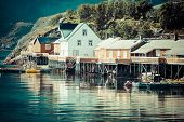 pic of reining  - Typical Norwegian fishing village with traditional red rorbu huts Reine Lofoten Islands Norway - JPG