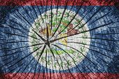 image of conquistadors  - flag of Belize on cracked wooden texture - JPG