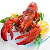stock photo of lobster  - lobster on dish with parsley and lemon slices - JPG