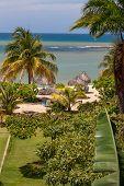 stock photo of garden eden  - A tropical garden with palm trees overlooking the ocean with blue sky - JPG