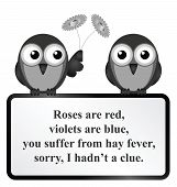 picture of hay fever  - Monochrome comical Hay Fever poem isolated on white background - JPG