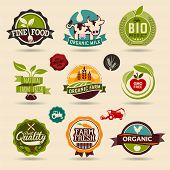 foto of food label  - Ecology and Organic Web Icon Set - JPG