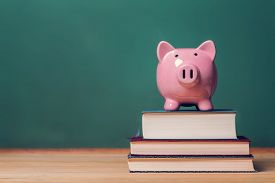picture of chalkboard  - Pink Piggy bank on top of books with chalkboard in the background as concept image of the costs of education - JPG