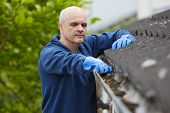 picture of gutter  - Man Clearing Leaves From Guttering Of House - JPG