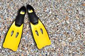 stock photo of fin  - this is yellow fins on sand beach - JPG