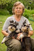 pic of schnauzer  - Senior woman hugs her two pets - JPG