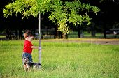 picture of blue heeler  - Boy and Blue Heeler puppy playing at the park - JPG
