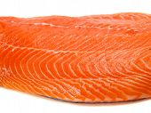 picture of salmon steak  - Salmon Steak  - JPG