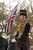 Kings Troop Royal Horse Artillery