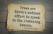 Top 40 quotes by Rabindranath Tagore - Indian writer, poet, musician, winner of Nobel Prize. Trees  poster
