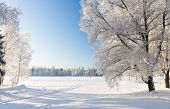 picture of sleet  - Winter park in snow - JPG