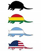 picture of armadillo  - Detailed and colorful illustration of armadillo flags - JPG