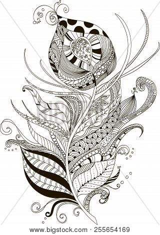 Drawing Peacock Feather Zentangle Style For Coloring Book Tattoo Shirt Design Logo Sign Stylize Poster