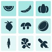 Fruit Icons Set With Gourd, Raspberry, Acorn And Other Coco Elements. Isolated Vector Illustration F poster