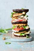Delicious Sandwich With Rye Bread, Meat, Cheese, Turkey, Onion, Tomato, Cilantro And Mayonnaise A Gr poster