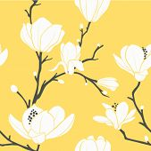 picture of magnolia  - seamless vector pattern with magnolia flowers - JPG