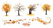 Autumn Nature Design Elements. Tree, Branch With Leaves, Fall Decor. Maple Leaves Design. poster