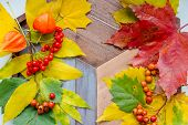 Autumn Leaves And Orange Physalis Lying On An Old Wooden Table. Still Life.autumn Thanksgiving Still poster
